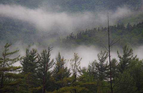 Adirondack-Workshop-20110623-0012.jpg